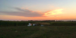 Sunset over the apiary